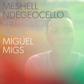 Meshell Ndegeocello - Petite Mort (Miguel Migs Moody Downtown Remix) by naiverecords